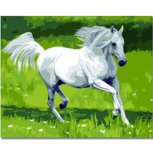 WEEN Horse Animal DIY Painting By Numbers Kit,Paint On Canvas, Coloring Numbers, Calligraphy For Home Decor 40x50cm