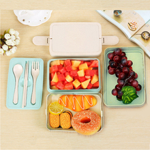 Healthy Material Lunch Box for Kids Wheat Straw Bento Boxes 2 Layer 3 Microwave Food Storage Container