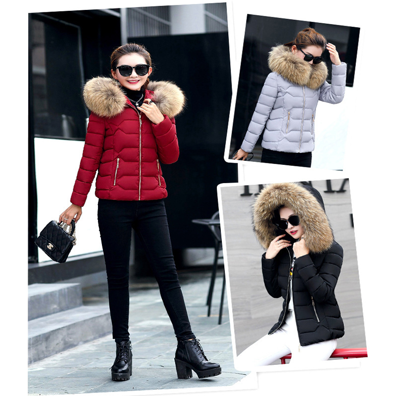 SESOAF Female Warm Winter Jacket 2017 Fashion Women Hooded Fur collar Down Cotton Coat Solid color Slim Large size Female Coat conservation and management of elephant corridors