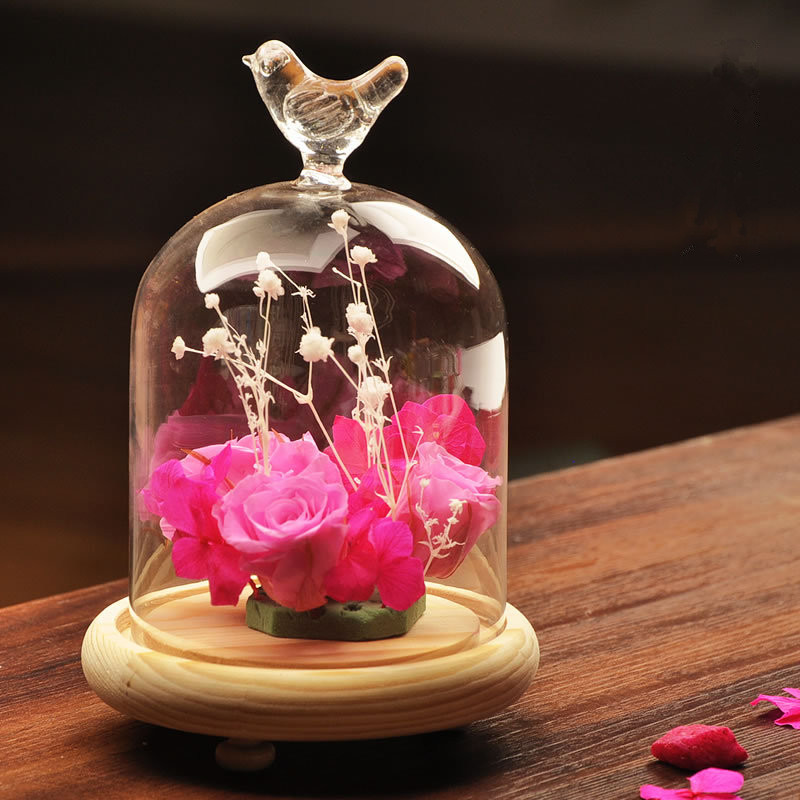 Glass cloche bird dome cover display choche clear