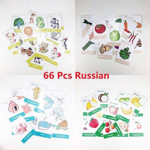 66 pcs set frutas legumes aprendizagem russa