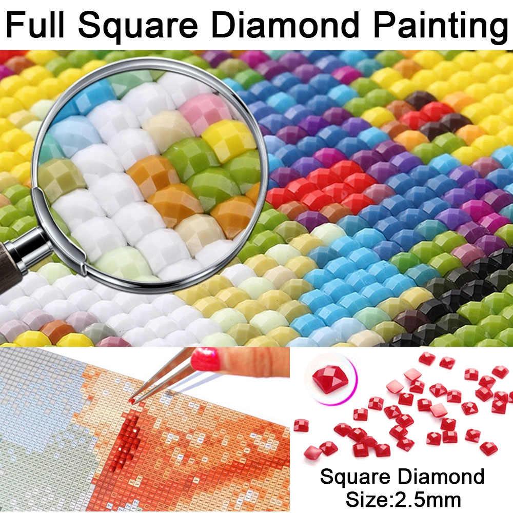 Đầy đủ, vuông, Kim Cương Thêu, Trừu Tượng Hoa Poppy, 5d Tự Làm Vòng Sơn Kim Cương Mới Cross-Stitch Mosaic Hình Ảnh Nghệ Thuật