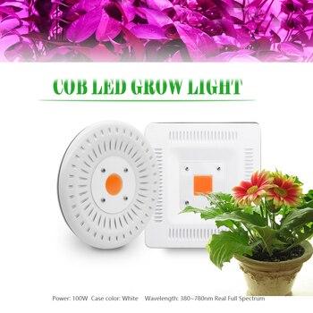 Cresce A Luz Led Full Spectrum Planta Crescer Luz COB Led 100 W à prova d' água IP67 crescer lâmpada para Plantas de Interior Ao Ar Livre flor Hidropônica