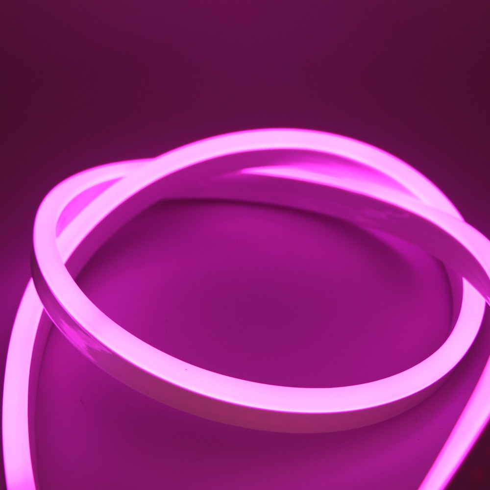 LED Flexible Strip Light AC 220V SMD 2835 LED Neon light IP68 Waterproof rope string lamp + EU Power plug