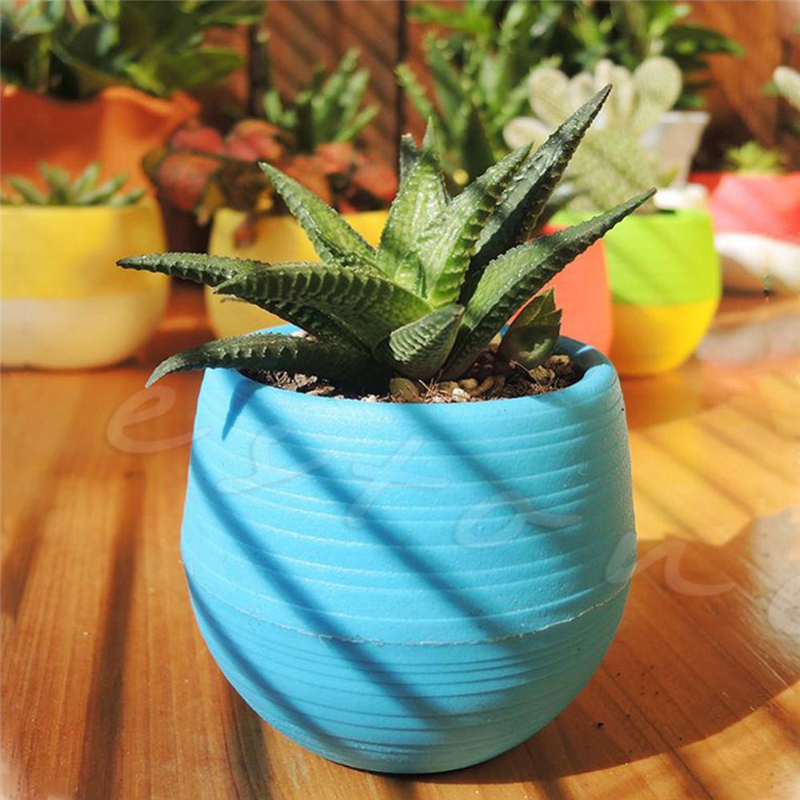 New Mini Colourful Cute Round Planter Plastic Plant Flower Pots Garden Supplies Nursery Pots For Home Garden Office Decor