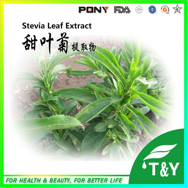 100% Natural Extrato de Estévia/Granel Stevia Extrato Puro/Extrato De Folha de Stevia 100g