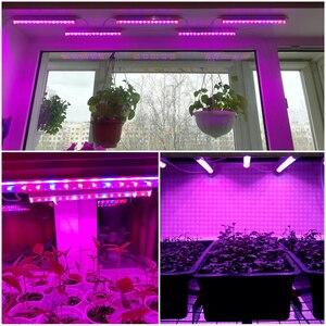 Image 5 - 110v 220v led crescer luz tubo t5 espectro completo led barra rígida luz interior phytolamp para planta aquário estufa crescer tenda 5 pces