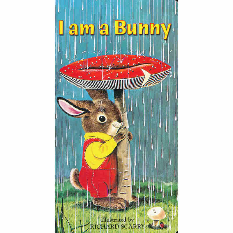 I am a bunny :English picture bookboard children's book  for children 0-3 age олафур арналдс olafur arnalds for now i am winter