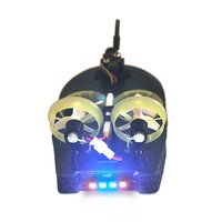 Hot Tiny Whoover TW65 Mini FPV Racing Hovercraft Boat Drift Car Model with Integrated Frsky Receiver OSD LED DIY Racer