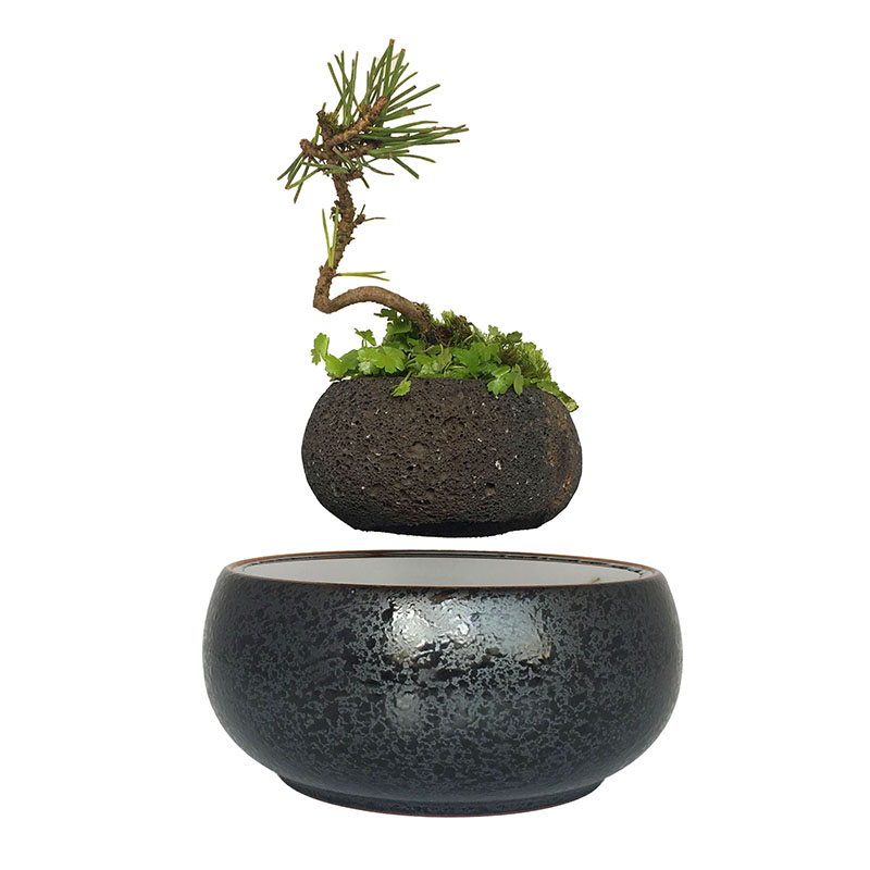 2017 magnetic levitation potted plant floating air bonsai for Floating plant pots