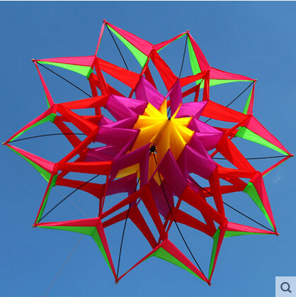 New Arrive New Style 3D Flower Kite With Handle & Line Good Flying Factory Outlet