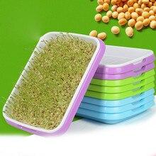 Bandeja para germinación de semillas hidropónica, plato de brotes, maceta de vivero, bandeja de vegetales para planta de semillero, bandeja de plástico para guardería