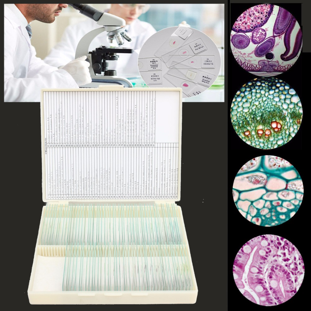 91pcs Plant Animal Insect Specimen Professional Glass Prepared Biological Basic Science Microscope Glass Slides projector color wheel for optoma ep776 free shipping