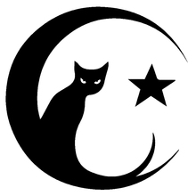 CS-587#15.3*15cm Cat Eye of the Moon Star Decals funny car sticker and decal silver/black vinyl auto car stickers цена