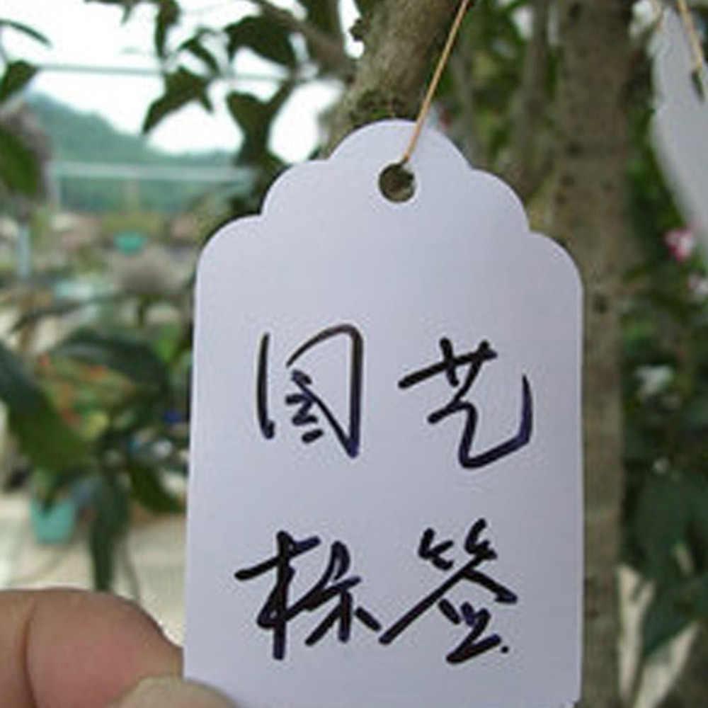 100Pcs พืช Hang ป้ายต้นกล้าสวนดอกไม้หม้อพลาสติกหมวดหมู่จำนวนแผ่นแขวน PVC Garden เครื่องมือ 3.6*2.5 ซม.