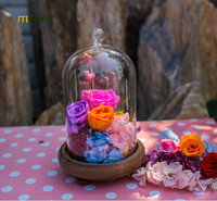 2015 Eternal Creative Vase Flower Landscape Glass Cover DIY Valentine S Day Gifts Micro Landscape Glass