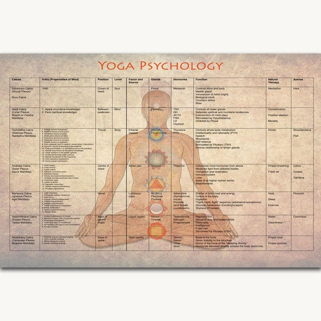 Fx1071 Yoga Home Exercise Pose Bodybuilding Fitness Education Chart