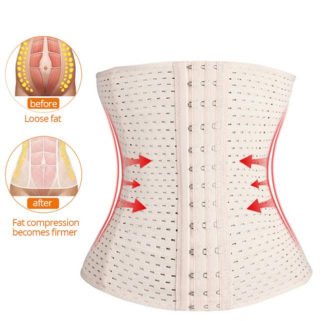 Women Tummy Body