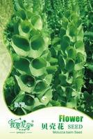 ORIGINAL PACKS 25 SEEDS GREEN Shell Flower * ANNUAL PALNTS CUT FLOWERS* Molucella Laevis