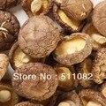 250 gramas de Cogumelo Shiitake Pó do Extrato 30% Beta-1, 3/1, 6 D Glucana poderoso immprovement imune