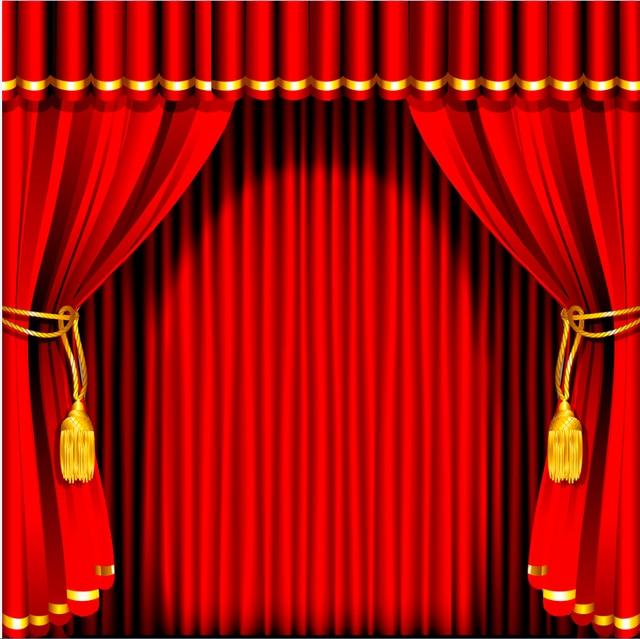 10x10FT Dark Red Curtain Stripes Wall Stage Custom Backdrop Photo Studio Background Vinyl 300cm X