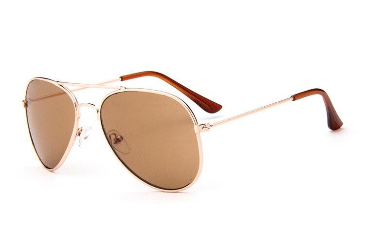 C6 Gold frame brown