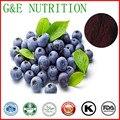 500g Natural de Mirtilo/Blueberry/Extrato de Vaccinium vitisidaea com frete grátis
