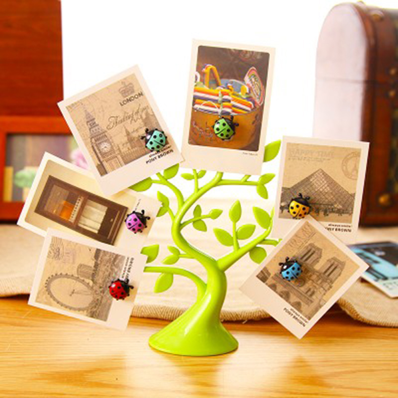 6pcs Funky Colour Wooden Magnet Magnetic Fridge Clips Party Goodie Bag Gifts
