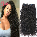 Peruvian Water Wave 4 Bundles Peruvian Virgin Hair Natural Wave Ocean Wave Hair Bundles Curly Wet and Wavy Human Hair Weave 100G