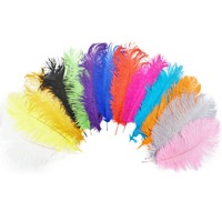 ZPDECOR 45 50 CM/ 18 20 Inch Ostrich feather fashion colorful Natural Ostrich Feathers for wedding party table Decorations