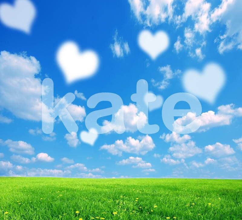 5*6.5FT Kate  Spring Photo Backdrops  Love Bright Backgrounds Blue Sky Backdrops Photography Fondos For Valentine'S Day MR-0252 blue sky чаша северный олень