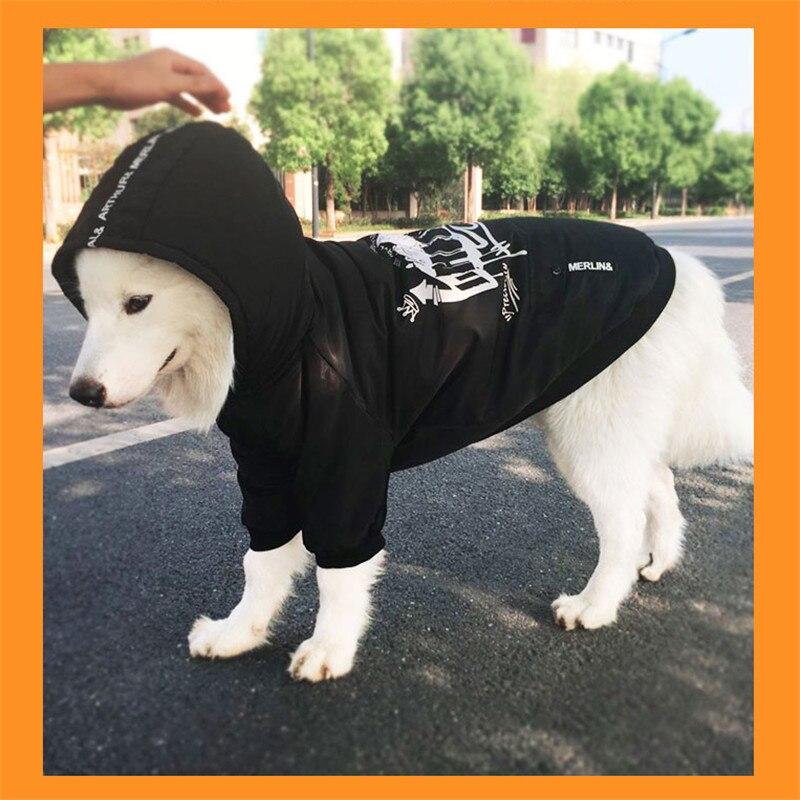 Labrador large dog clothes winter (7)