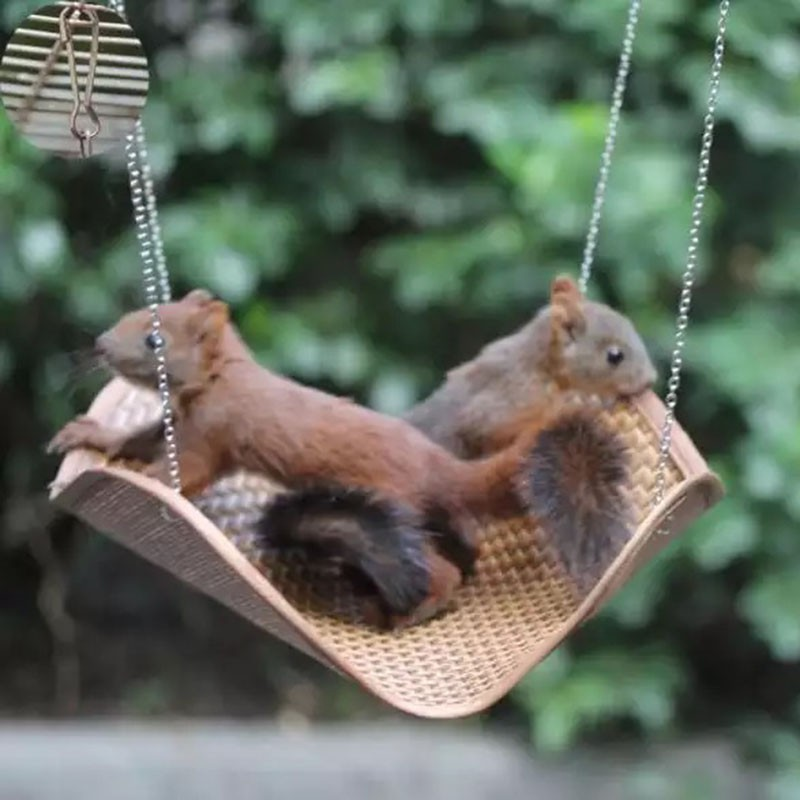 Pet Products Small Animal Supplies Fashion Style Pet Hammock Hamster Mice Rat Rodents Hanging Bed Cage Small Pet Swing Nest Toys Ventilated Ol Spring & Summer