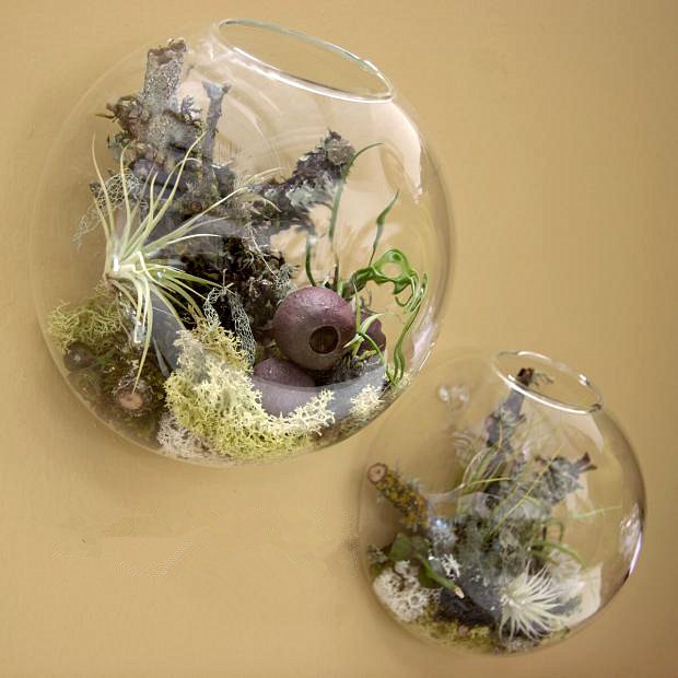 2pcsset Wall Bubble Terrariums Glass Wall Vase Wall Mounted
