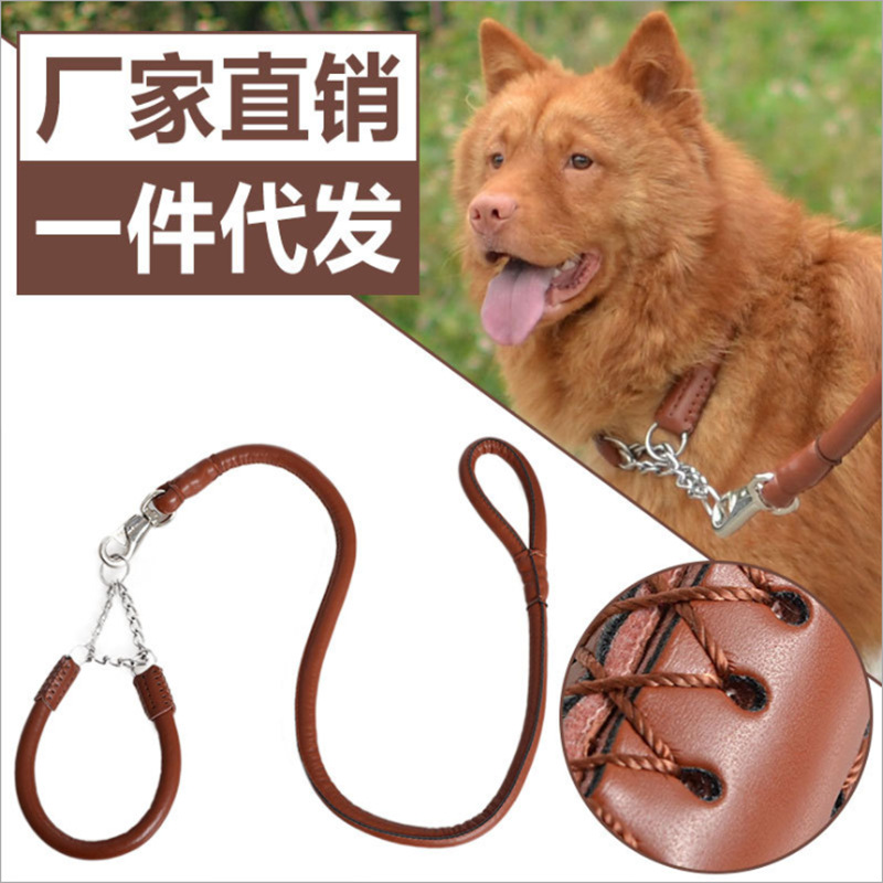Hot Sales Pet Supplies Automatic Telescopic Golden Retriever Dog Chain Hand Holding Rope Neck Ring Set