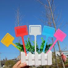 10 шт. садовые этикетки милые пластиковые бирки для растений двойного назначения растительные этикетки маркеры садовые инструменты этикетки с фруктами для использования в питомнике