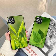 Art High Weed Pictures Leaf Grass Phone Case For iphone 5s 6 7 8 11 12 plus xsmax xr pro mini se Cover Fundas Coque