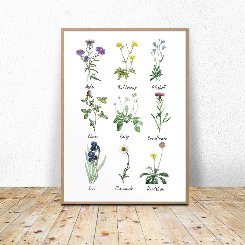 Wild Flowers Chart Print