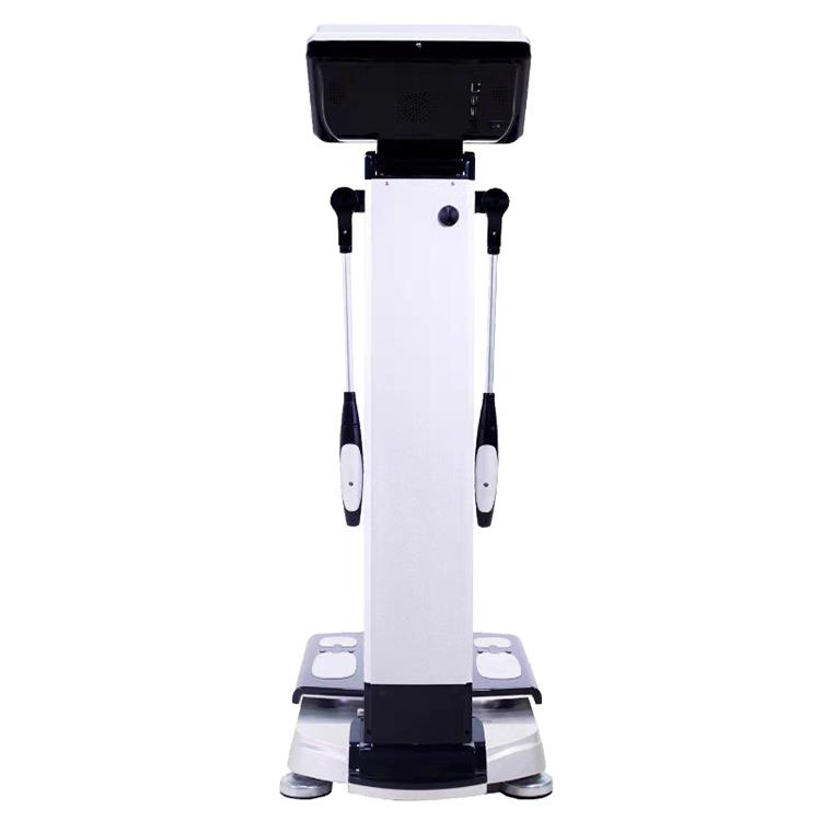 2020 Factory direct sales body fat analyzer/body composition analyzer/body element analyzer Machine CE/DHL