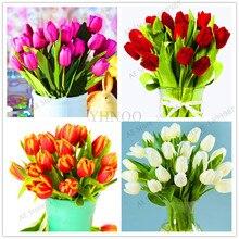 107 шт, высококачественный Цветочный сад Тюльпан Плант бонсай плантас Балконный горшок самые красивые и красочные растения бонсай