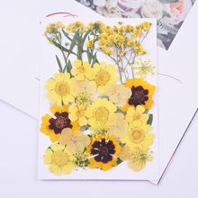 Yellow dried flowers for uv epoxy resin jewelry making blue