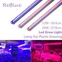 Led Wachsen Licht Fitolampy Phyto Led Für Pflanzen Wachsen Licht Voll Spektrum Geführte Anlage Licht Phyto Lampen Für Blume sämling blüte