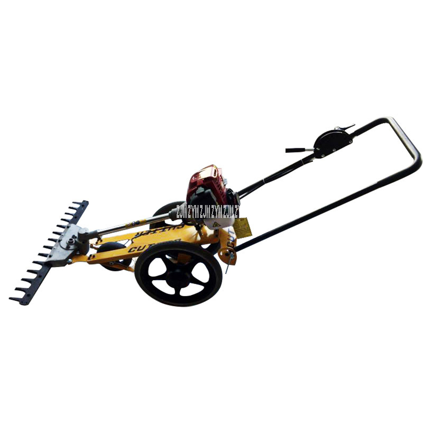 Hand-Pushed Lawn Mower Multifunctional Four Stroke Mini Gasoline Reel Mower Agricultural Orchard Brush Cutter Garden Tool 700W