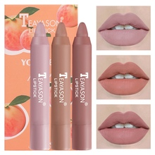 Pretty Comy  4 Colors Matte Lipstick Set Waterproof Long Lasting Lip Gloss Nude Velvet Pigment Women Fashion Lip Makeup mac shiny pretty things lip set