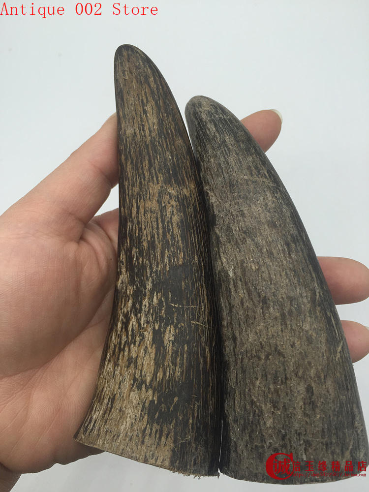 2pcs Natural Domesticated Yak Horn Tip Raw Material #5896