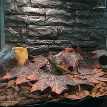 Pet-Decoration-Supplies Terrarium Jungle-Tree Reptile 12pcs Leaves