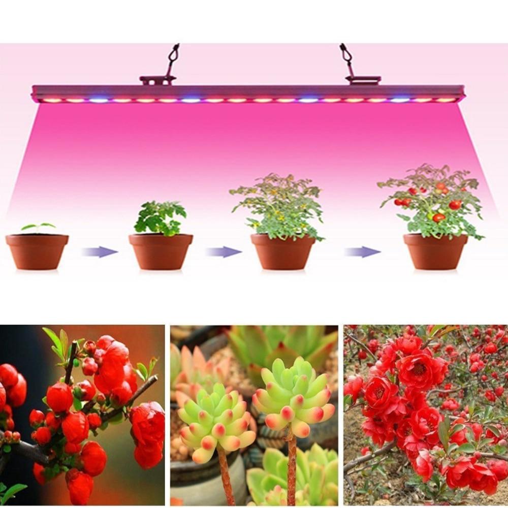 LED Plant Growth Light Strip 5M 5050 Full Spectrum 1
