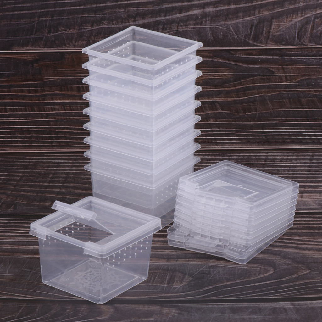 10pcs Feeding Box Reptile Cage Hatching Container Rearing Tank For Lizards Terrarium Tortoise Spider Beetle Insect House