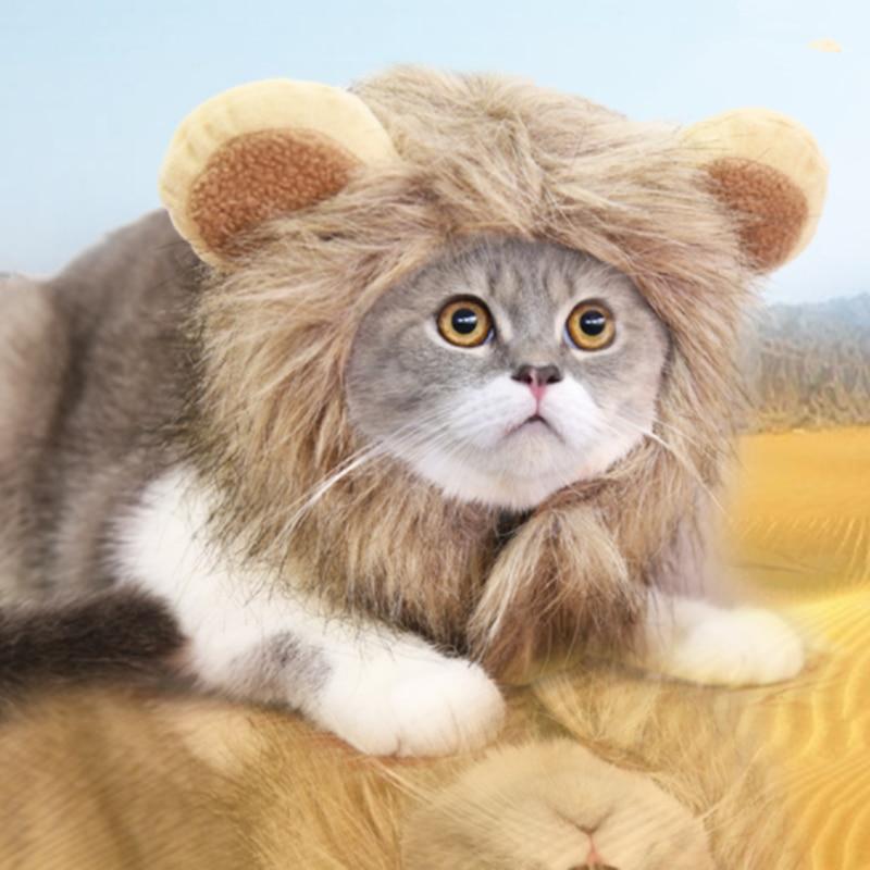Śmieszne słodkie kostium dla zwierząt Cosplay lwia grzywa czapka z peruką kapelusz dla kota Halloween Xmas ubrania przebranie z uszami jesienno-zimowa