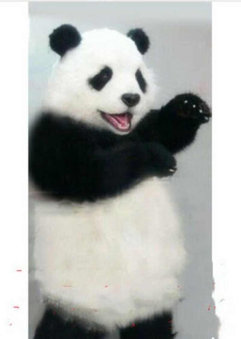 Fursuit Panda new cute panda bear fursuit furry mascot costume cosplay outfits clothing  advertising halloween adult size child birthday party